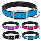Durable Padded Nylon Dog Collar with Heavy Duty Buckle for B
