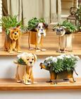 Small Metal Dog Breed Planters Black Lab, Boxer, Chihuahua, Dachshund And More