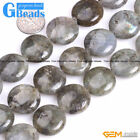 """Natural Labradorite Gemstone Coin Loose Beads For Jewelry Making Strand 15"""""""