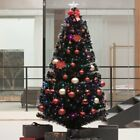 6/7ft. Pre-Lit LED Pine Artificial Christmas Tree with Multicolor LED Lights