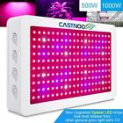 CASTNOO 1000W 500W LED Grow Lamp Full Spectrum Hydro Veg Flower Grow Panel WT
