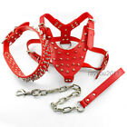 Sharp Spiked Studded Leather Large Dog Collars&Harness&Leash for Pitbull Boxer