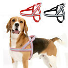 Leather No Pull Dog Harness Adjustable Reflective for Pit Bull Rottweiler S M L