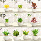 Artificial Potted Succulent Plant Mini Optional Color Home Room Office Decor