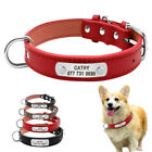 Personalised Leather Dog Collar with Nameplate Engraved Red Black Grey S M L XL