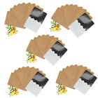 10/30/50X Ginger Patch Body Detox Neck Knee Pad Pain Relief Health Care