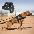 Dog Weight Harness for Pulling Heavy Duty Padded Medium Large Breed for Pitbulls