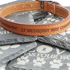 Personalised Custom Leather Dog Collar, Puppy decide your own wording Tan colour