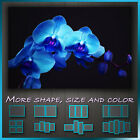 ' Blossoming Blue Orchid Flower ' Floral Modern Art Canvas Wall Deco