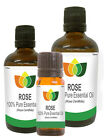 100% Pure ROSE ABSOLUTE ESSENTIAL OIL Multi Sizes, Morroccan Rosa Centifolia