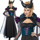 LADIES ADULT STORYBOOK SORCERESS FANCY DRESS COSTUME HALLOWEEN WITCH OUTFIT