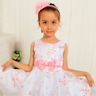 P188 Pink Princess Christmas Wedding Party Flower Girls Dresses SIZE 6-7-8-9-10T