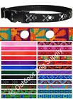 Pet Stop® Lupine Dog Collar Replacement Strap! 14 Patterns & 7 Colors