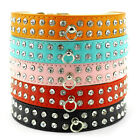 Sling Rhinestone Diamond Jeweled Colorful Leather Small Dog Pet Diamante Collar