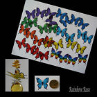 Transparent Film Butterfly #17 CHAKRA Size 2 PRE-CUT 8, 16 or 32 suncatcher 3D