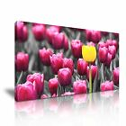 FLOWER Tulip 1 1-21 Canvas Framed Printed Wall Art ~ More Size
