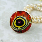25mm 30mm butterfly wing red Nouveau cab Handmade glass Photo cabochon 30B001