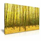 NATURE Forest 90 Landscape 1L Canvas Framed Printed Wall Art ~ More Size