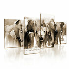Elephant Africa Canvas Modern Abstract Home Office Wall Art ~ 4pc More Sizes