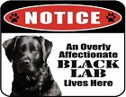 An Overly Affectionate Black Lab Lives Here 9 x 11.5 Laminated Sign