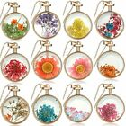 Fashion Natural Ture Flower Living Memory Plant round Locket Glass Necklace Gift