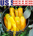 30+ ORGANICALLY GROWN  Golden Marconi Pepper Seeds Heirloom Sweet NON-GMO GIANT
