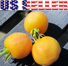 30+ ORGANICALLY GROWN Garden Peach Tomato Seeds Yellow Chiswick NON GMO Heirloom