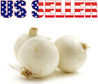 150+ ORGANICALLY GROWN White Sweet Spanish Onion Seeds Heirloom NON-GMO Mild USA