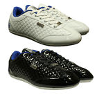 MENS BOYS KIDS TRAINERS GIOGOI LACE-UP TRAINERS IN WHITE & BLACK COLOURS  3 - 12