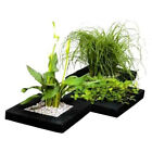 Floating Pond Plant Baskets - 24cm Width, Square Potted Plant Lilly Island Float