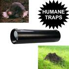 HUMANE MOLE TRAPS.  TRAP AND RELEASE CONTROL NO POISONS NON HARMING MOLE HILL