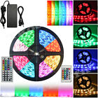 3528 5050 5M 300 Leds SMD LED Strip Tape Roll Day White RGB DC 12V 6A Adapter