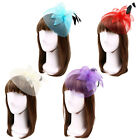 Elegant 2-Way Flower Veil  Feather Fascinator with Clip  Headband -Diff Colors