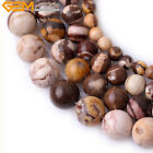 Natural Stone Australian Zebra Jasper Gemstone Beads For Jewelry Making 15""