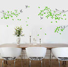 Large Tree Branches Birds Wall Art Wall Stickers Vinyl Decor Decals Wall Mural