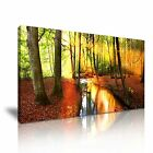 Stunning Forest Landscape River Canvas Modern Home Wall Art Deco
