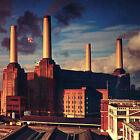 Pink Floyd Animals Album Cover WALL ART CANVAS FRAMED OR POSTER PRINT