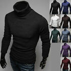 Mens Dandy Casual Fashion Knit Turtleneck Sweater Long Sleeve Polo Top W272 S/M