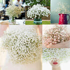 200 Head Wonderful Baby's Breath Gypsophila Silk Flower Party Wedding Home Décor