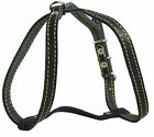 """Real Leather Dog Harness, 15""""-19"""" Chest size, 1/2"""" Wide, Poodle"""