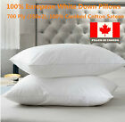 100% Cotton  European White Down Pillows 700 Ply 1PC Filled in Canada