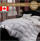 100% Cotton EUROPEAN WHITE DOWN DUVET COMFORTER  800 LOFT 500TC FILLED IN CANADA
