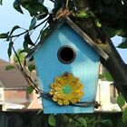 TRADITIONAL & NOVELTY HANGING BIRD N...