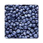 Blueberries - Oversized Rubber Coasters Set of 4 or 6