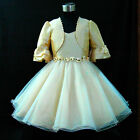 Beige Gold Bridesmaid Party Flower Girls Dresses + Cardigan Set SIZE 2-4-6-8-10T
