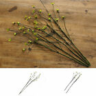 2pcs Craft Artificial Small Cirrus Rattan Artificial Dried Branch Home Decor