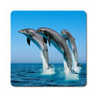 Dolphins 2 - Oversized Rubber Coasters Set of 4 or 6