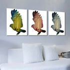 Modern Home Decor Canvas Painting HD Print Picture Art Animal Eagle Unframed