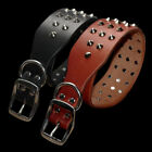 Внешний вид - Heavy Duty Genuine Leather Pet Dog Collar Spiked Studded for Rottweiler Labrador