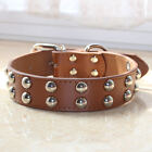 Brown Leather Dog Collar 2 Row Mushroom Studded Dog Collar for Pit Bull Terrier